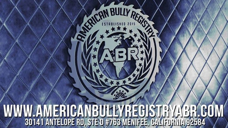 American Bully Registry