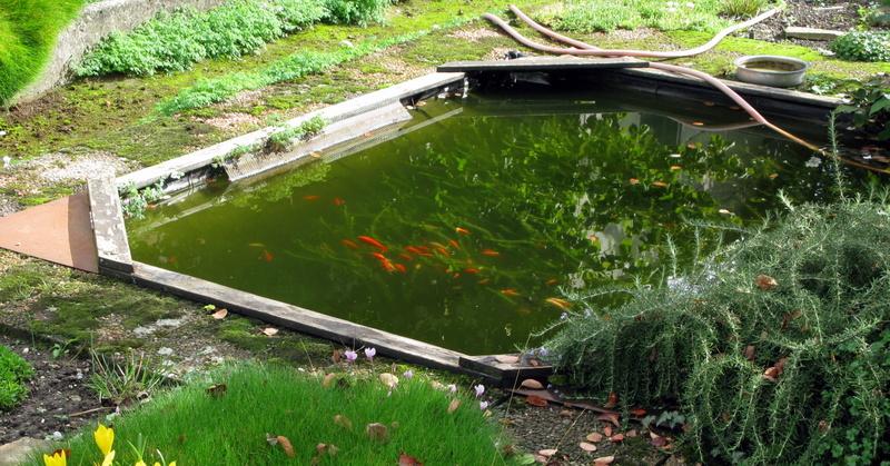 Bassins & bassines. Aqua8010