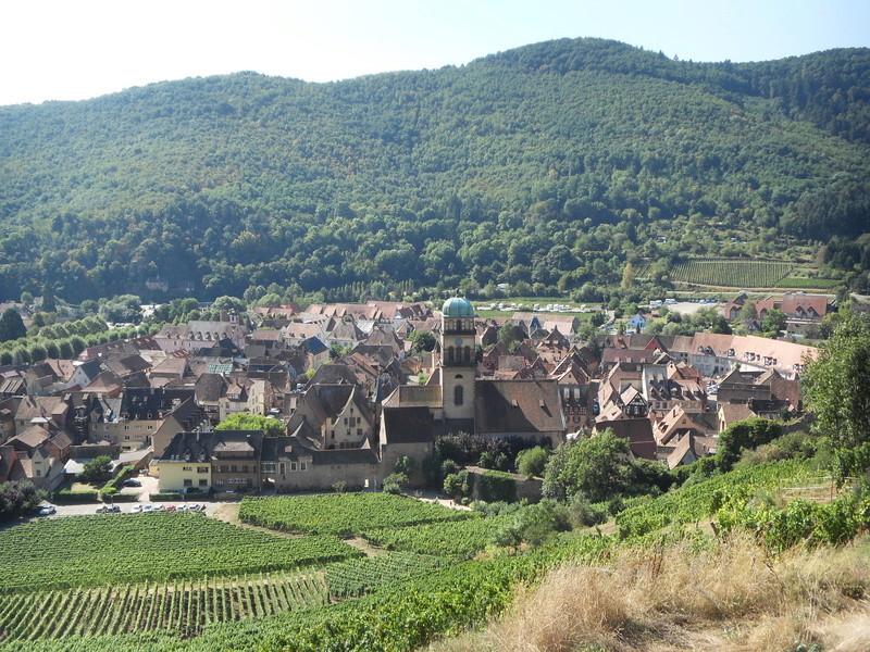 l'alsace . la route des vins  00910