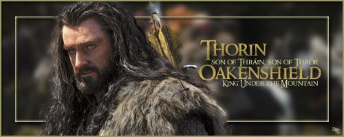 Thorin II, roi sous la montagne  Sigtho10