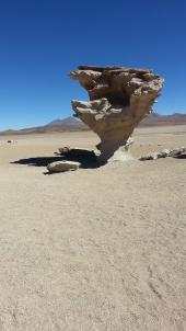 Des jdidis à la rencontre des Inca... La Bolivie Img-2114