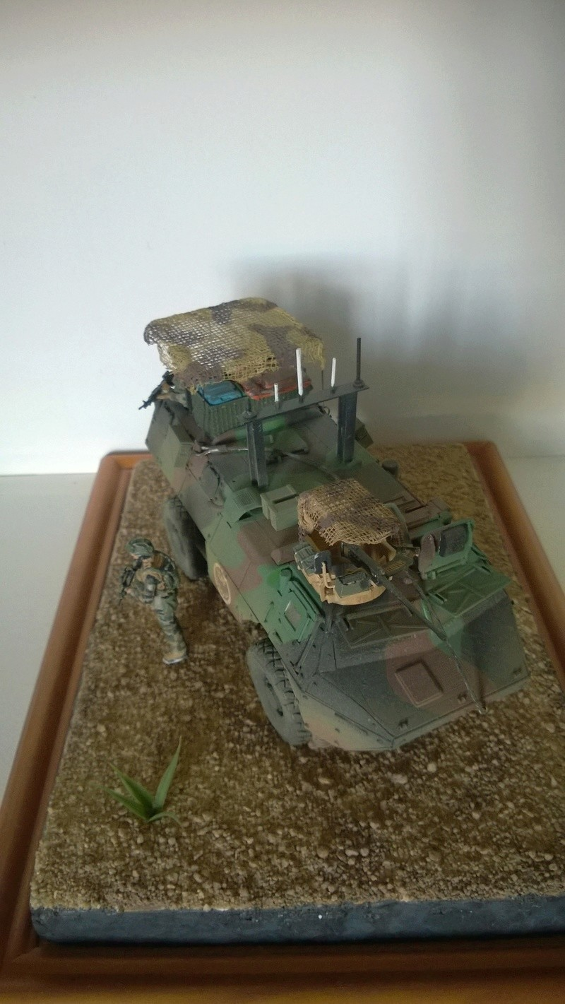 vallée de tagab ( vab heller 1/35 , tourelle , roues et figurines blast model ) Vab_af16