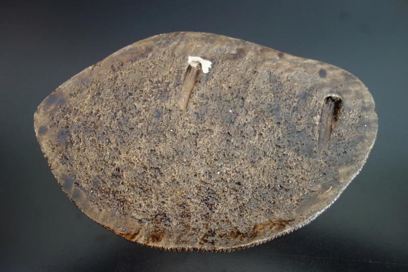 Horse wall tile/plaque - fat lava era? Dsc01910