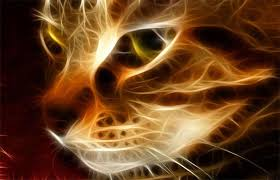 Cats have healing powers~ Cats10