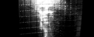 Common paranormal experiences Para10