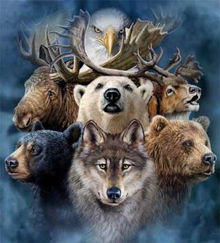 Spirit Animals~ Spirit10