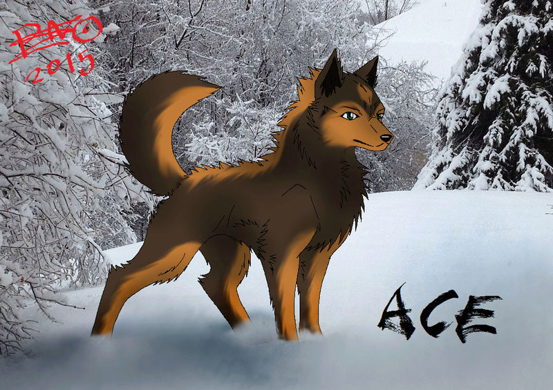 Ace - Iso paha susi Acer_510