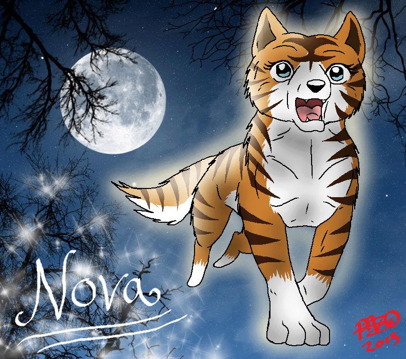 Shiomin Valmishahmoja ~ ♥ Novabo10