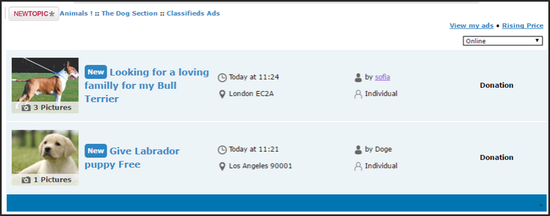 Forumotion - New feature on forumotion forums : Classified ads  Ee11
