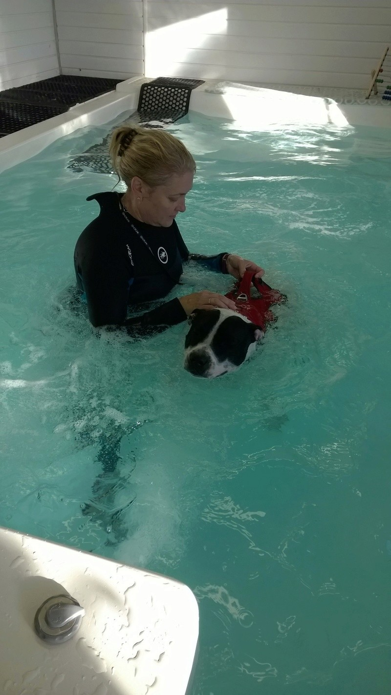 Hydrotherapy Wp_20131