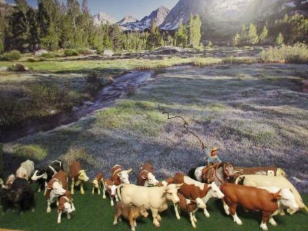 Bemalungen, Umbauten, Modellierungen - neue Cowboys für meine Dioramen - Seite 4 Viehtr13