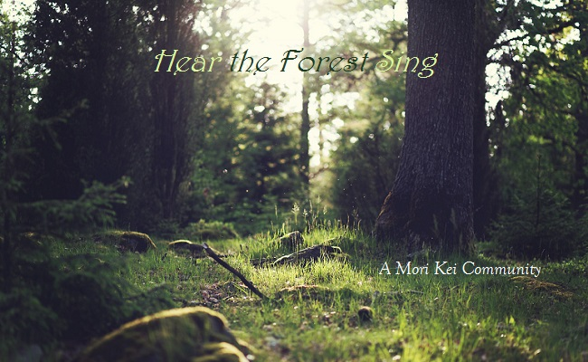 Hear the Forest Sing