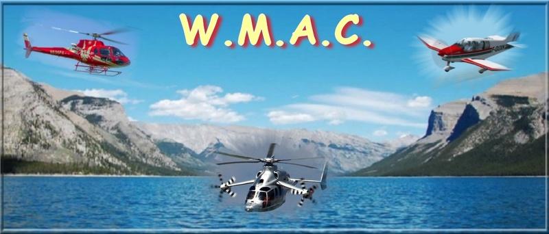Will Maur Aviation Company