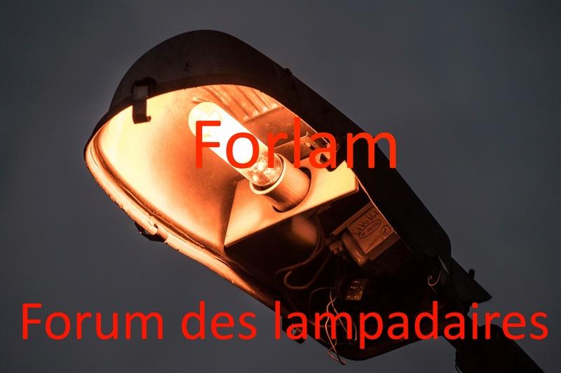 Forlam