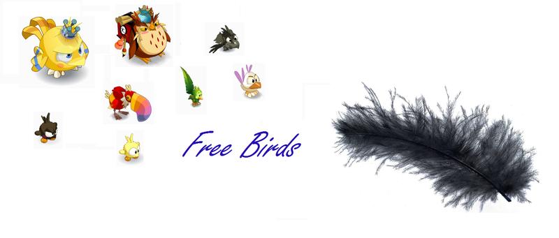 Dofus Free Birds