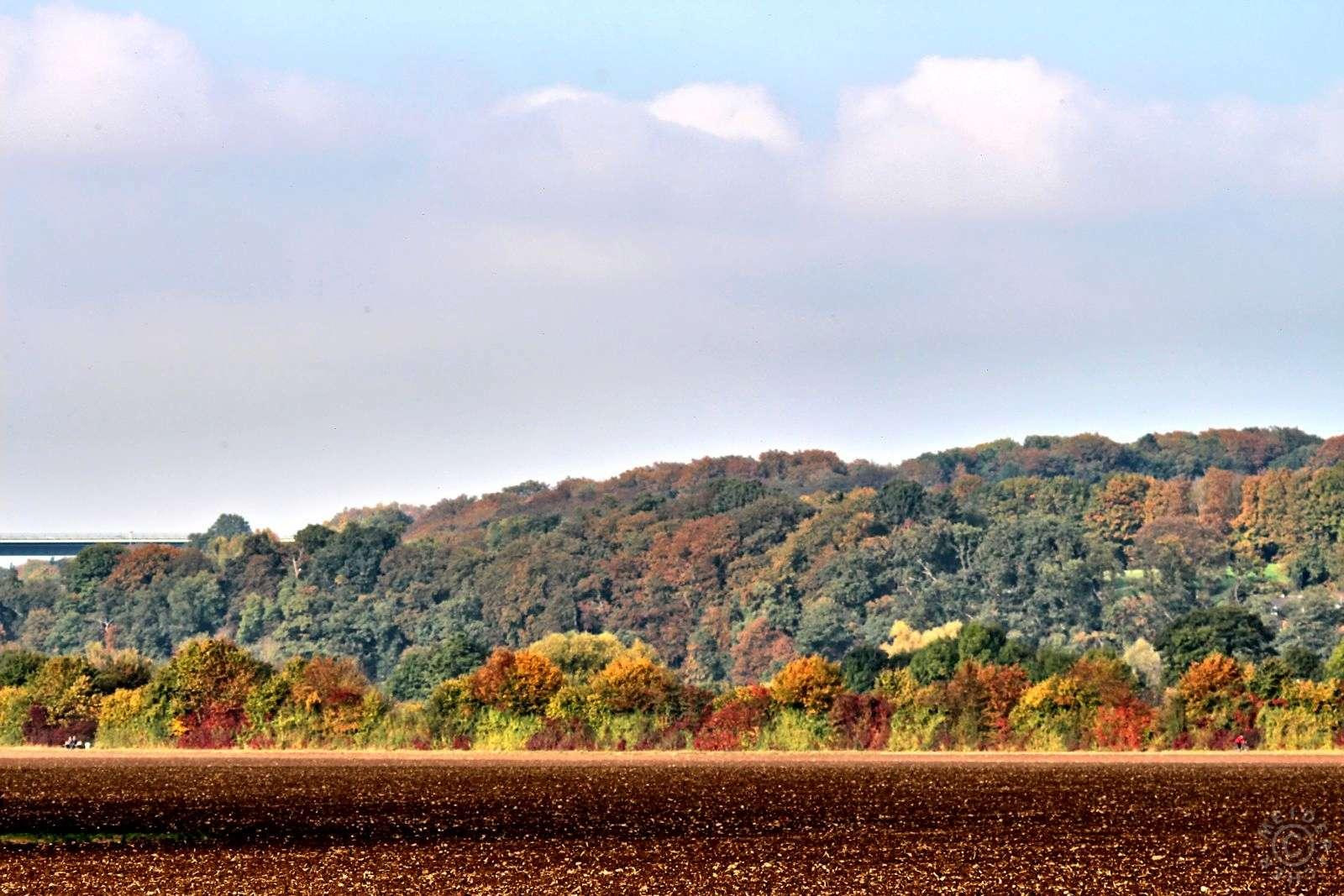 Herbstimpressionen 1611