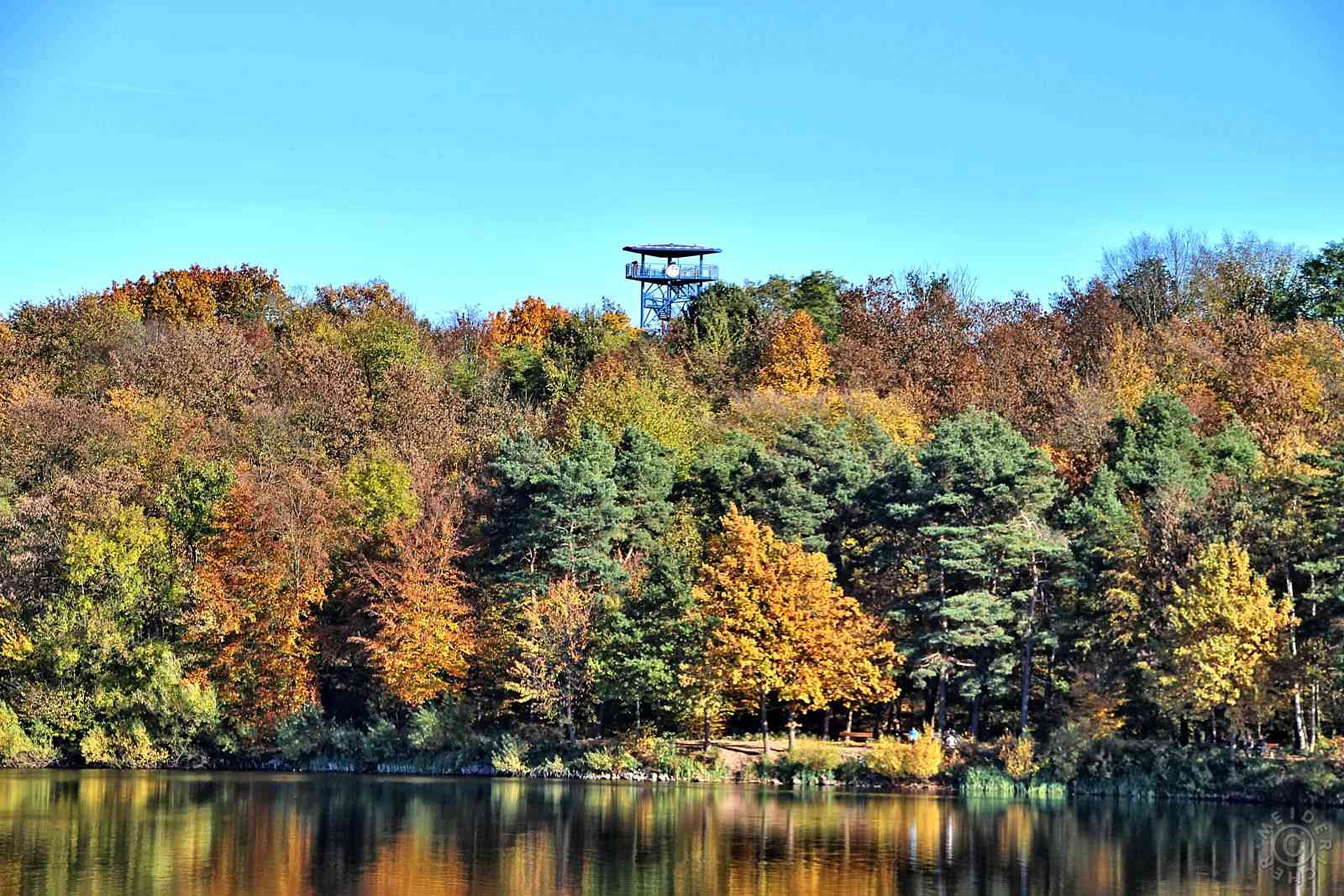 Herbstimpressionen: Sechs Seen Platte 511