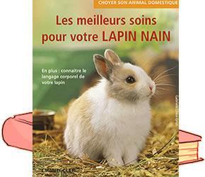 L'histoire de mon lapin nain qui a vécu presque 11 ans! 18110