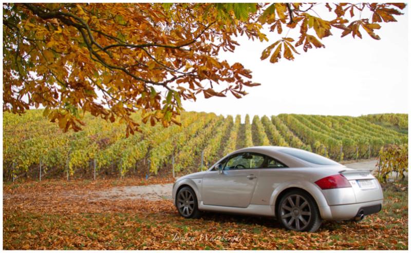 Audi TT MK1 1.8T 180 de Jordan - Page 2 Img_3814