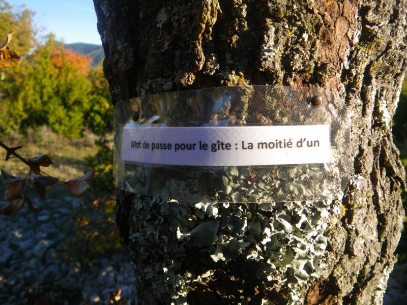"""La toussaint 2016 """" Sortie TT dans l'hérault """" - Page 14 Imgp5719"""