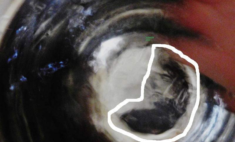 visage avec eau Dscn1610