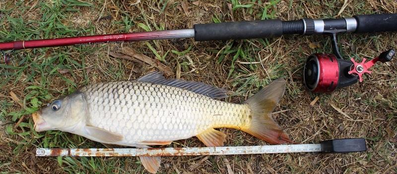 Fishing Report - Lake Chapala - Oct 24 Captur12