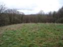 Construction petit habitat en bois Dsc02210