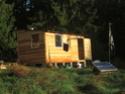 Construction petit habitat en bois Img_0911