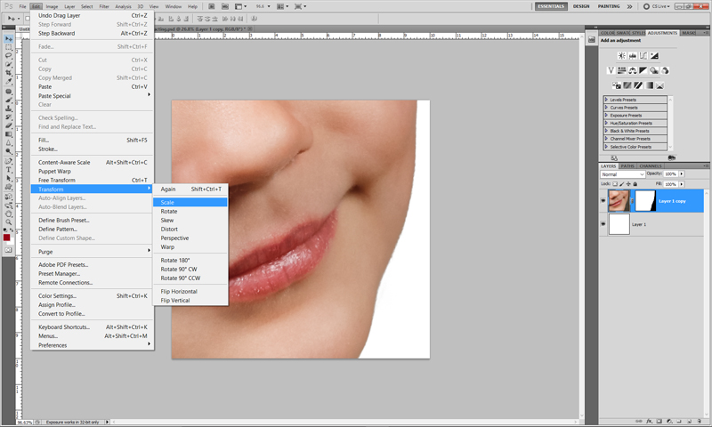 Extraction - How To Insert Your Extraction Into Another Image Select21