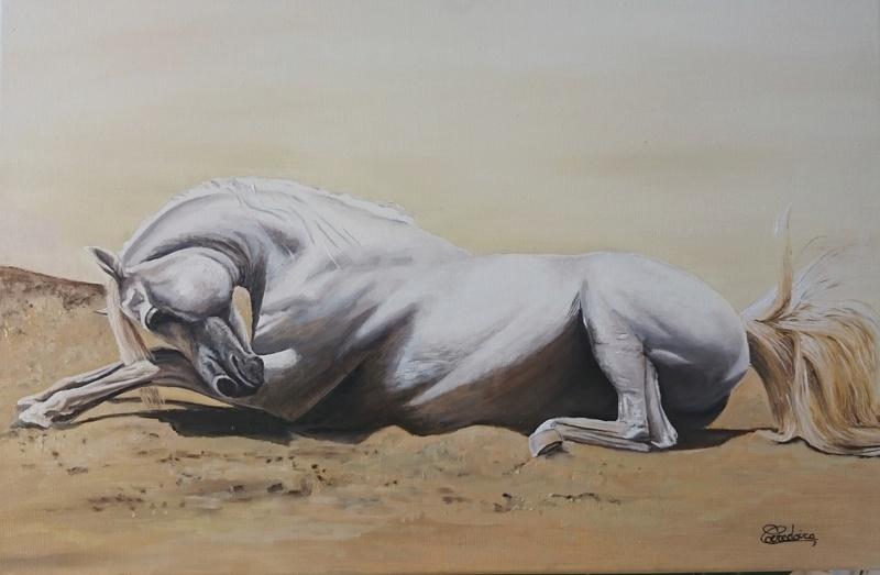 Portrait de votre cheval Dsc_2910