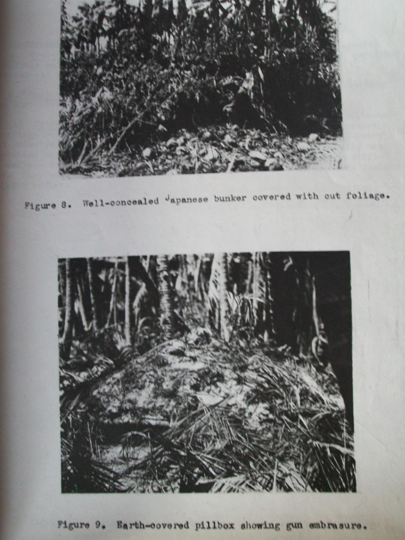 Japanese camouflage. 100_5857