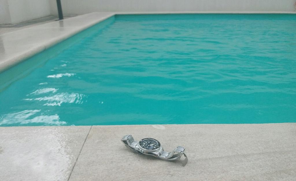Muestra tu Seiko pasado por agua !!!  Foto_219