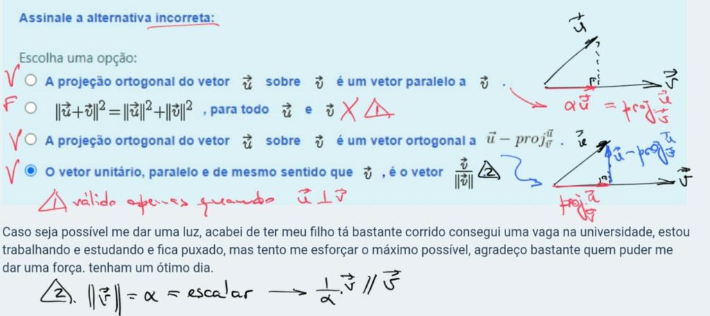 valor de alpha pra que o vetor u+v seja ortogonal a w-u Scre1518
