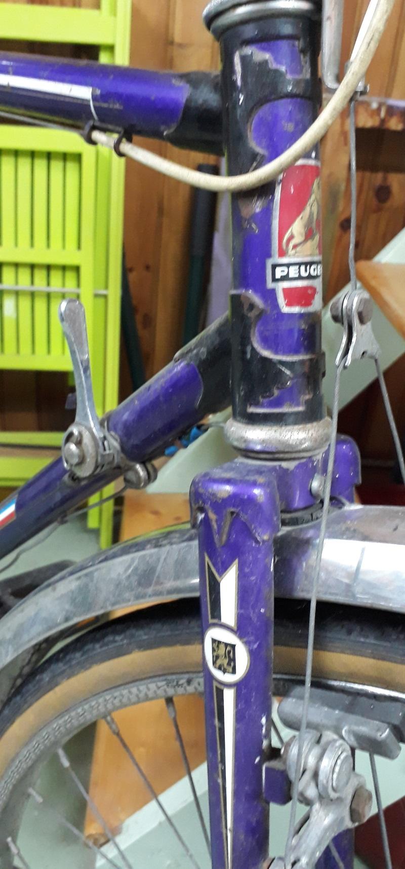 Peugeot randonneur violet Peugeo18