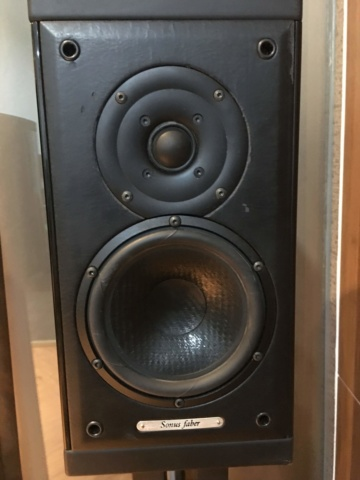 Sonus Faber Monitor (Used) Img_5311