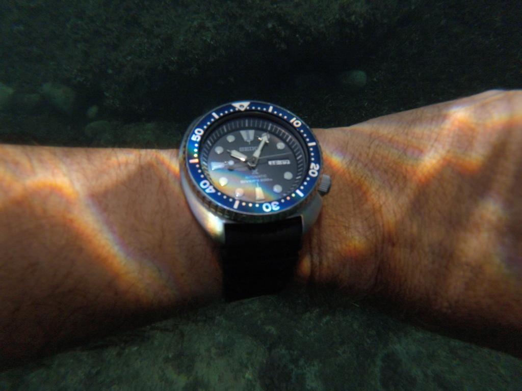 Seiko Diver's - Fotos - Página 3 Gopr0210