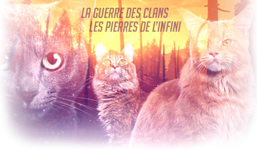 La Guerre Des Clans, Pierres de l'Infini