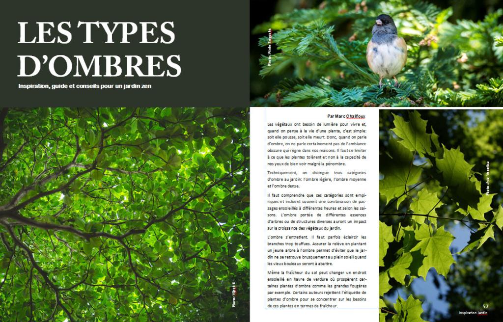 Plantes d'ombre - magazine - Page 4 Ombre110