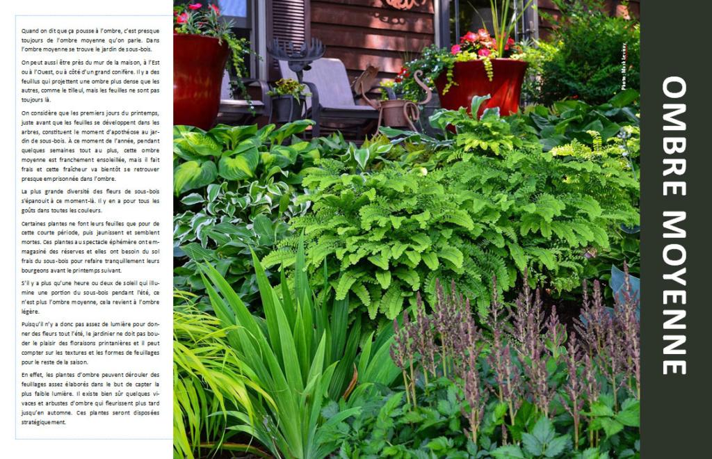 Plantes d'ombre - magazine - Page 4 Ombre310
