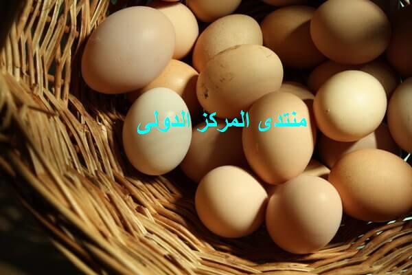 تفسير رؤية البيض في المنام Aoa-o10