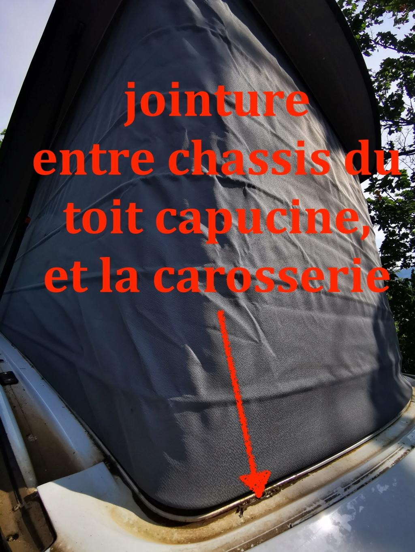 fuite / infiltrations par toit capucine w639 Img_2021