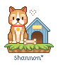 Welcome  Friends Shanno16
