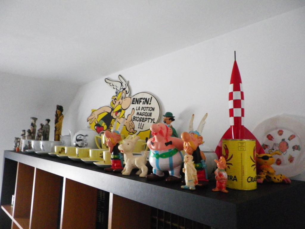 Présentation générale de ma collection Imgp0815