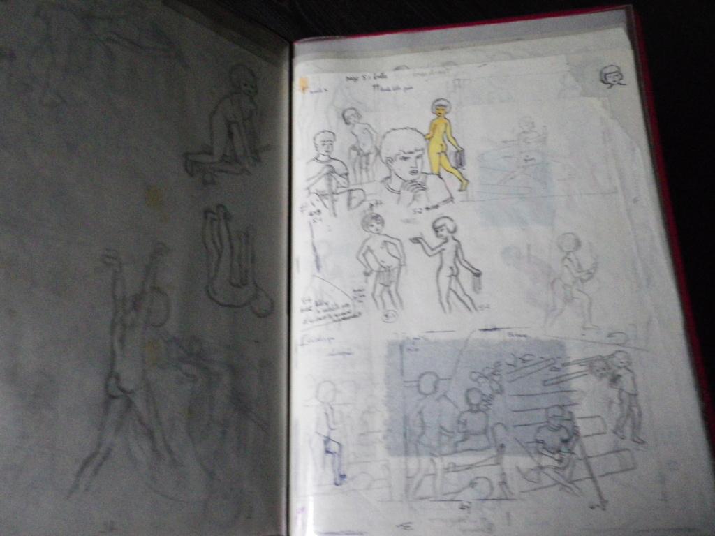 Présentation générale de ma collection - Page 5 Imgp0989