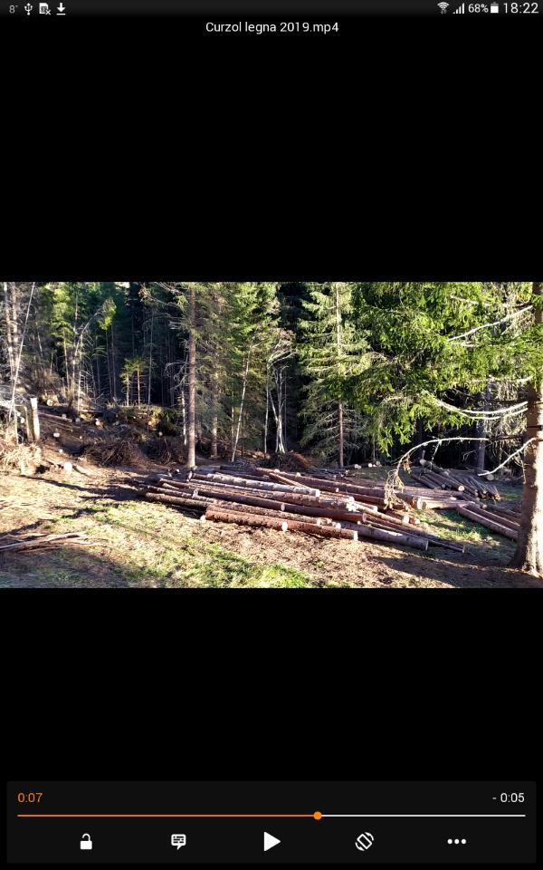 alberi abbattuti dai temporali - Pagina 2 Screen12