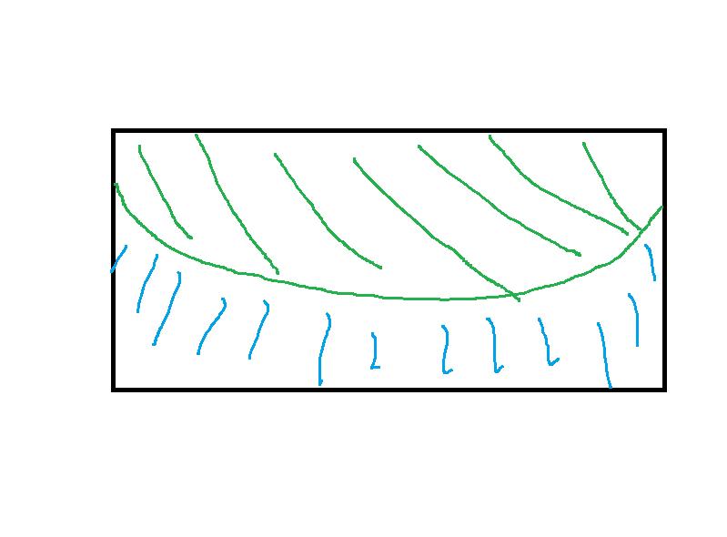 espèce paludarium Schema11