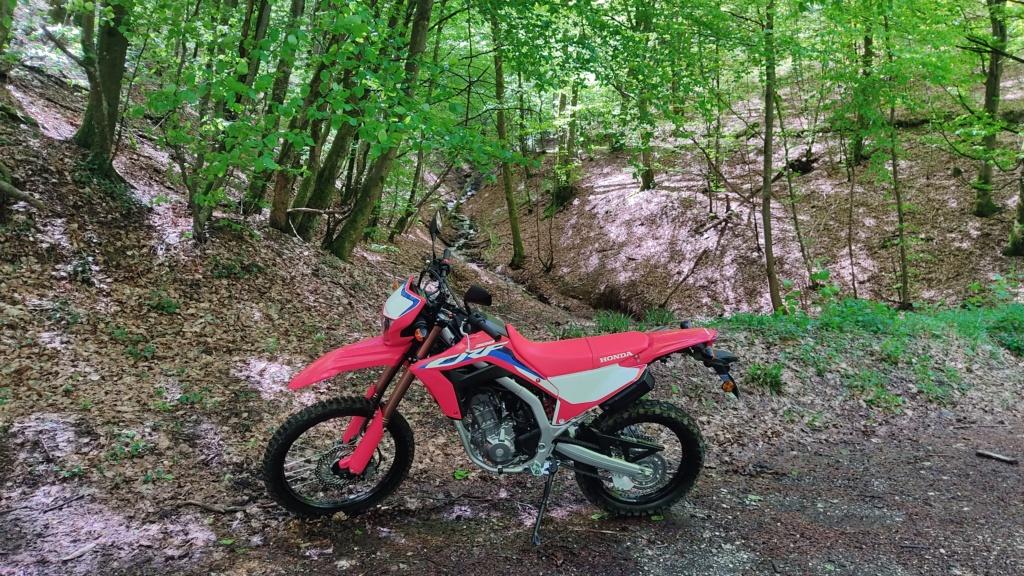 Modifs et accessoires Honda 300 CRF-L - Page 3 16218411