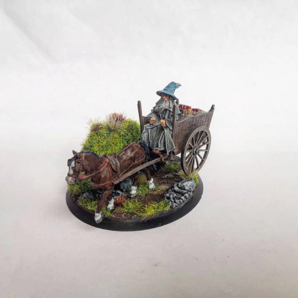 Le Pèlerin Gris sur sa charrette. Img_2206