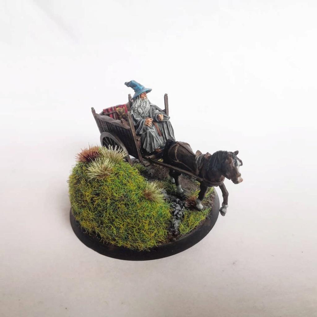 Le Pèlerin Gris sur sa charrette. Img_2207