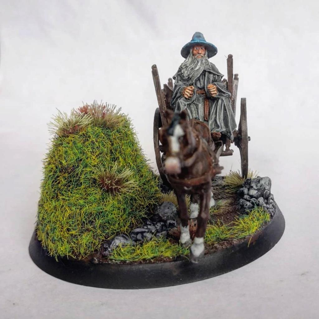 Le Pèlerin Gris sur sa charrette. Img_2208
